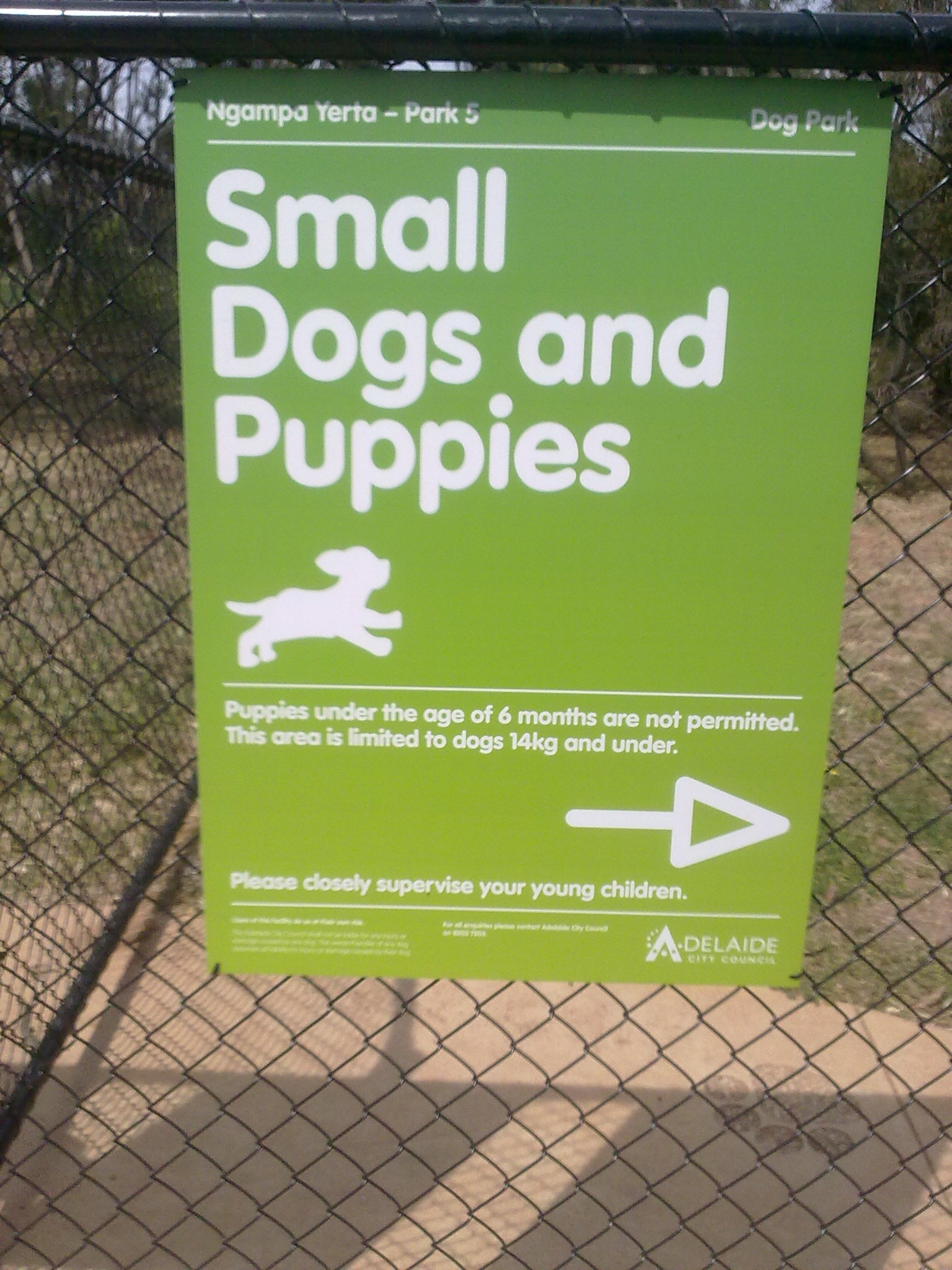 Dog Friendly Water Parks
